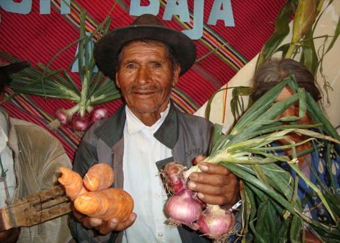 Agricultor adulto mayor del área rural de Bolivia muestra los productos alimenticios cosechados en su comunidad